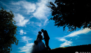 Lili + Farzam Wedding