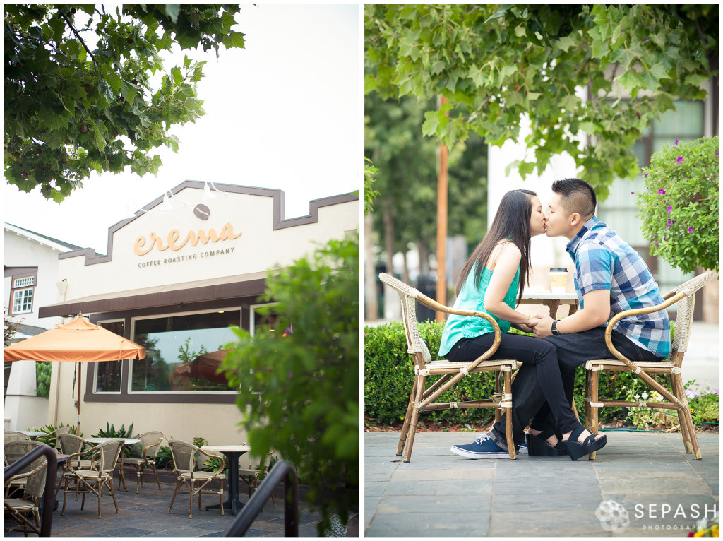 1.Collage-1Sepash-San-Jose-Engagement-Photography-sepash.com_Sylvia-and-Chalk
